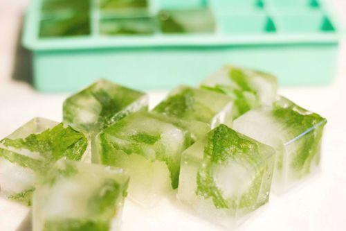 green-tea-ice-cubes